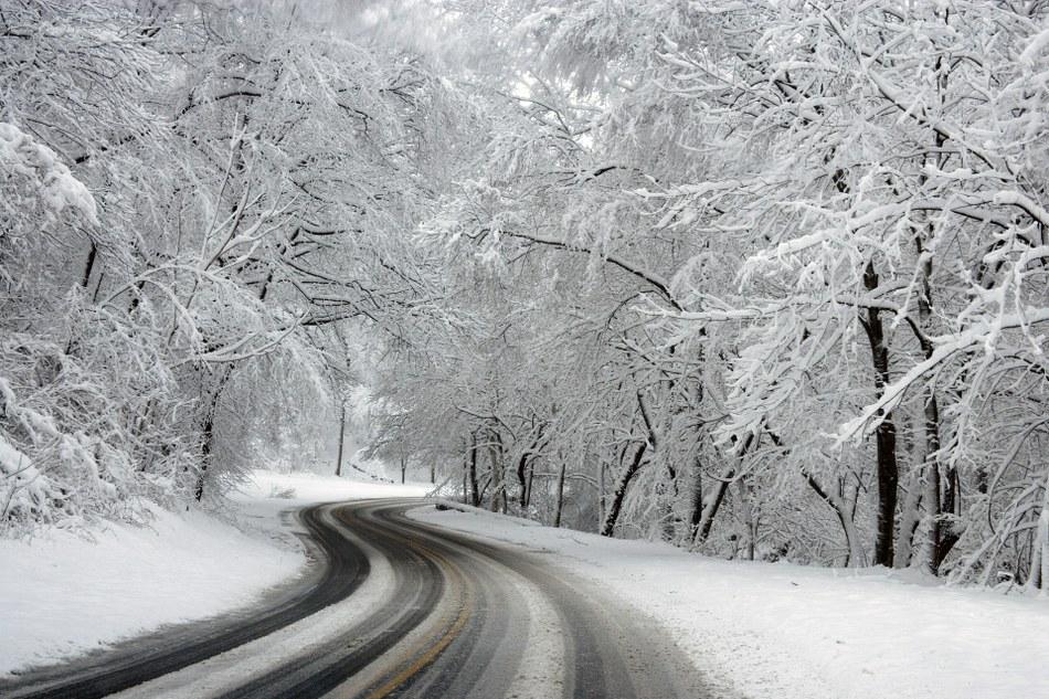 banner_hiver.jpg